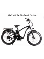 "48V750W16Ah 26""x4.0 Fat Tire Beach Cruiser Electric Bicycle"